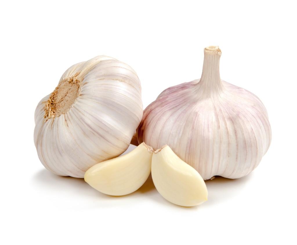 Garlic for uti treatment