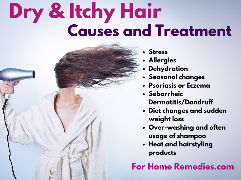 Causes for a Itchy Dry Scalp Treatment with Homemade Remedies